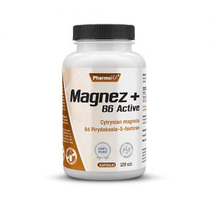 magnez b6 active 120 kaps pharmovit